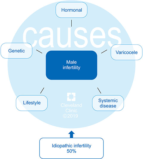 Male Oxidative Stress Infertility (MOSI): Proposed Terminology and